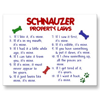 Schnauzer Rules